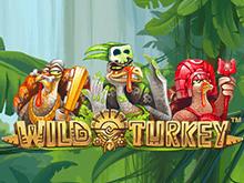 Играйте в автомат Wild Turkey на деньги